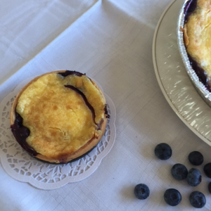 blueberry-kuchen
